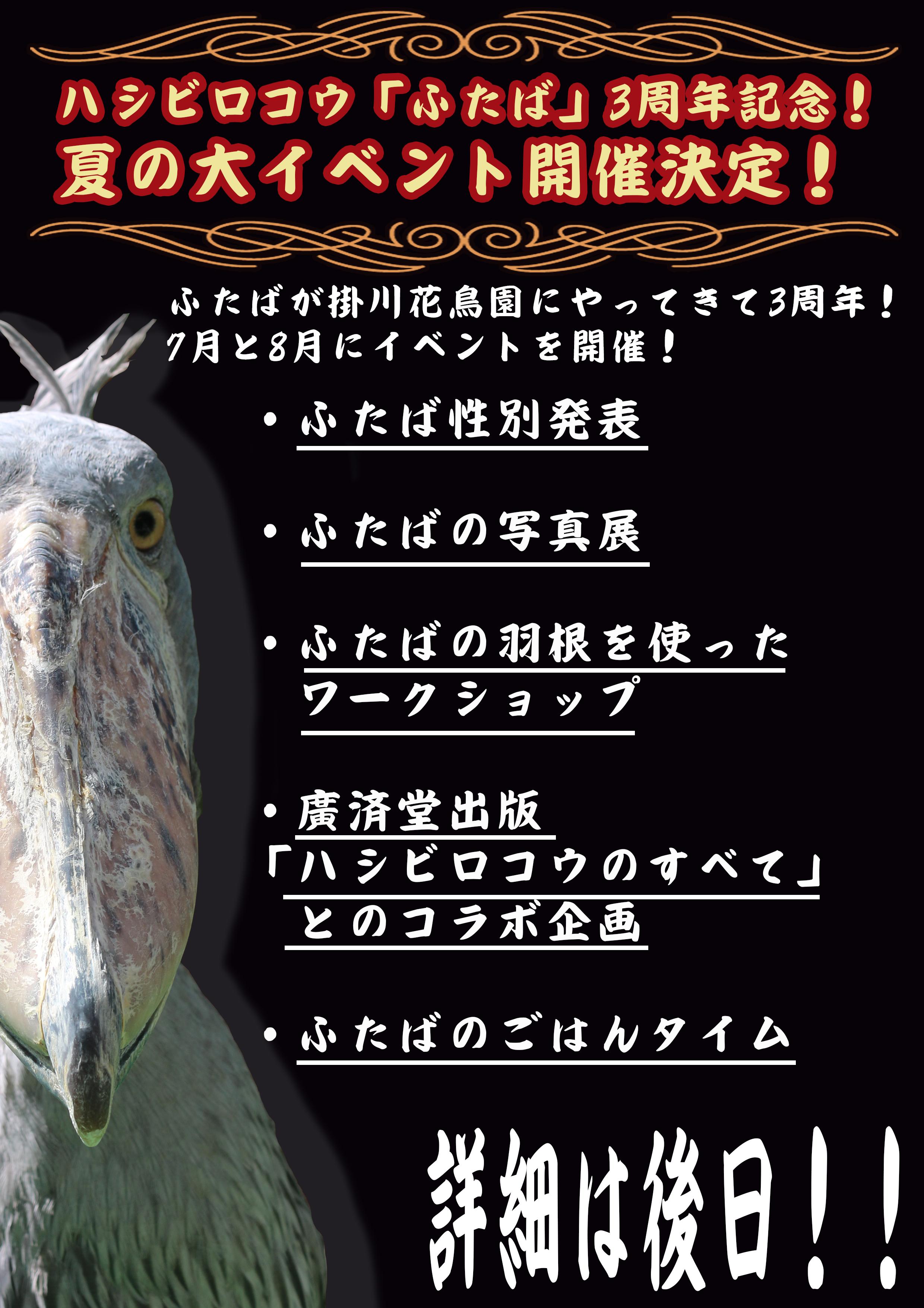 ふたば 夏の大イベントポスター